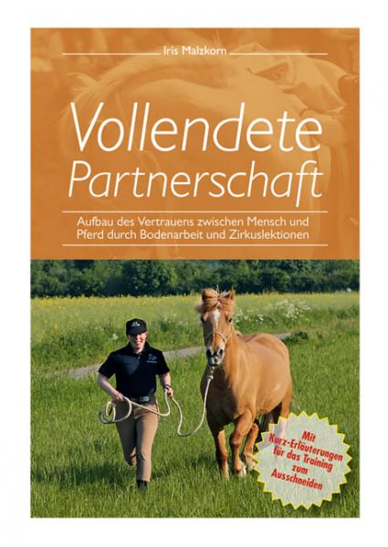 Vollendete Partnerschaft/Aufbau des Vertrauens zwischen Mensch und Pferd durch Bodenarbeit und Zirku